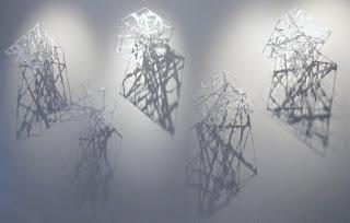 GB wild lace- reading shadows.JPG
