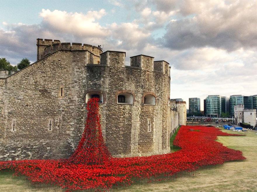 ceramic-poppies-first-world-war-installation-london-tower-12.jpg