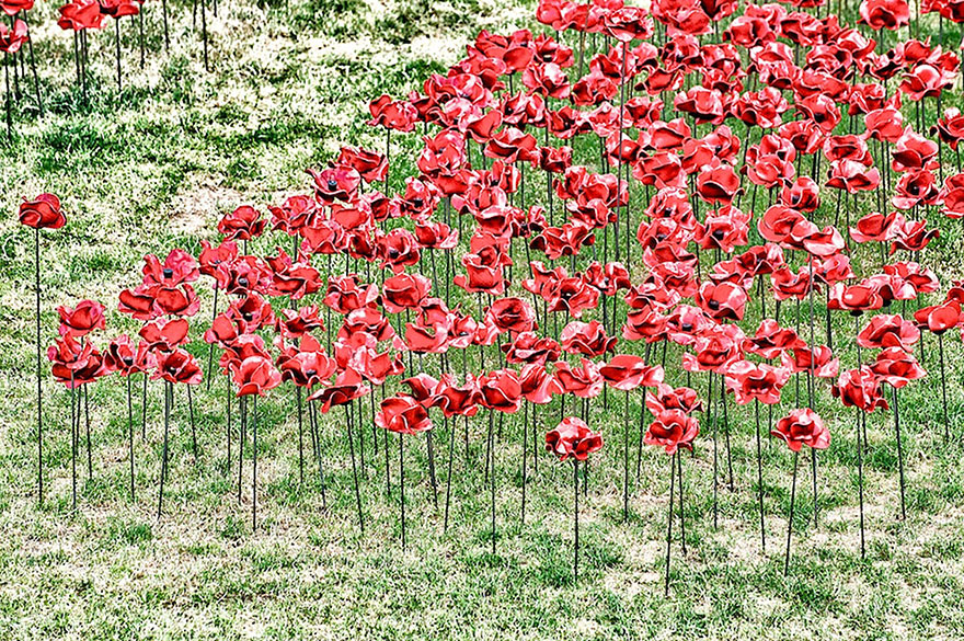 ceramic-poppies-first-world-war-installation-london-tower-9.jpg