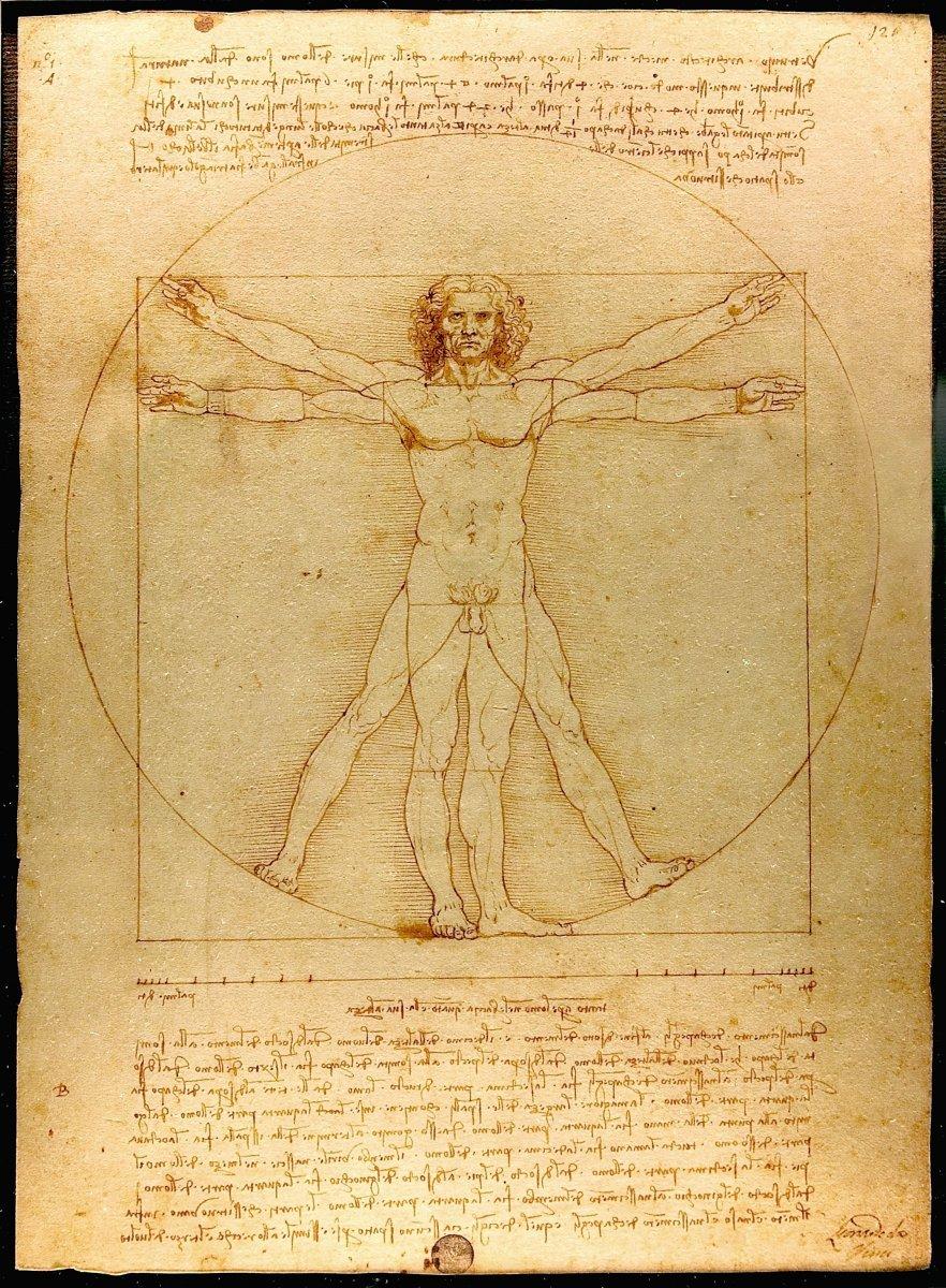 The Vitruvian Man (c.1485) Accademia, Venice.jpg