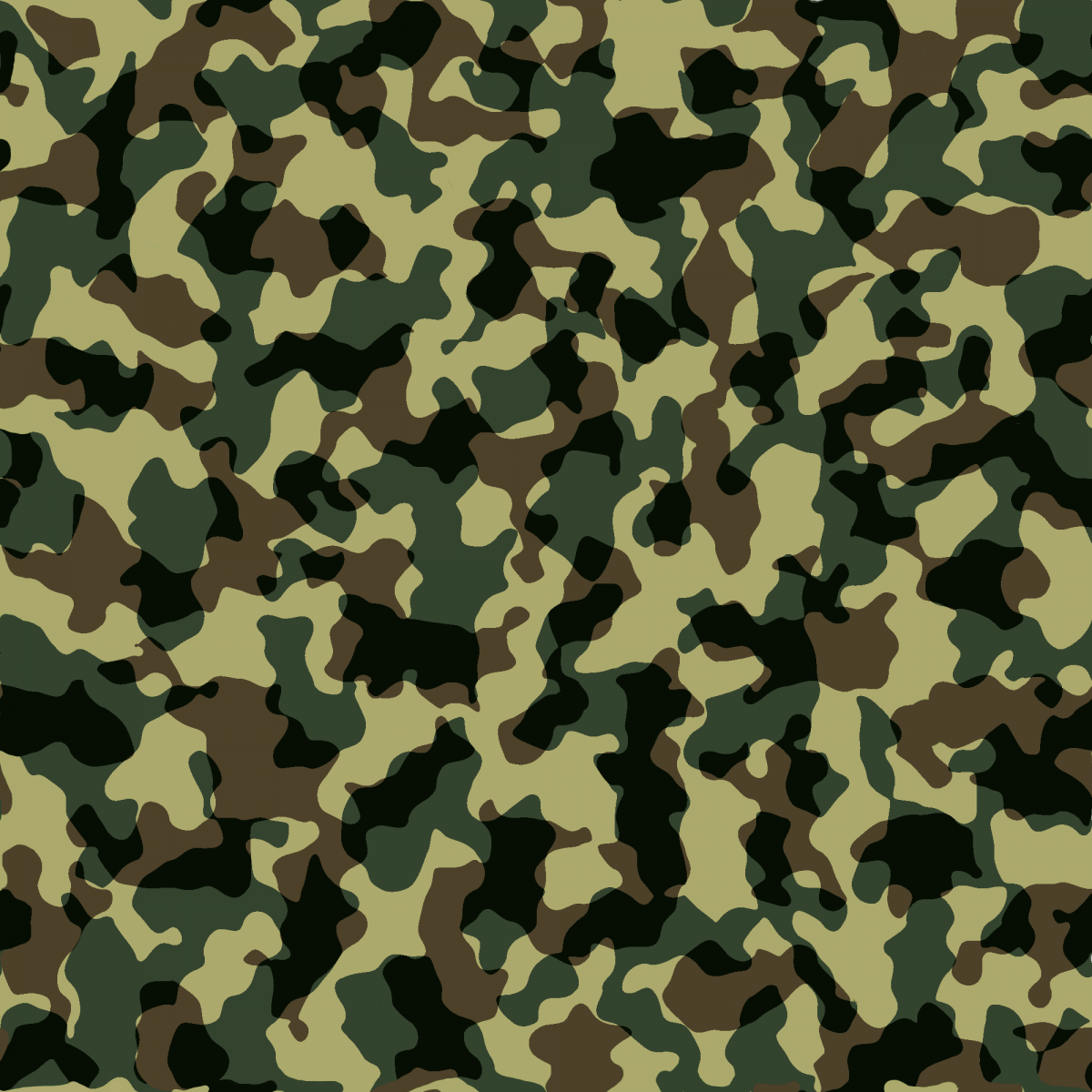 Camouflage_pattern_texture.png