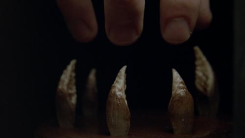 Talia's_claws.jpg