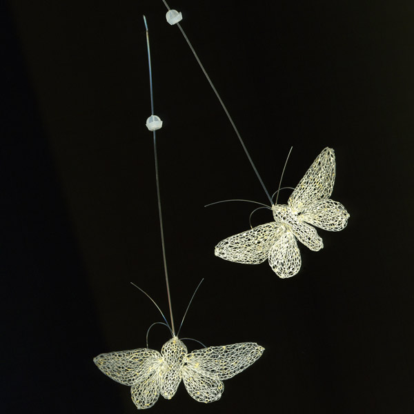 Pure white moths with gold dust