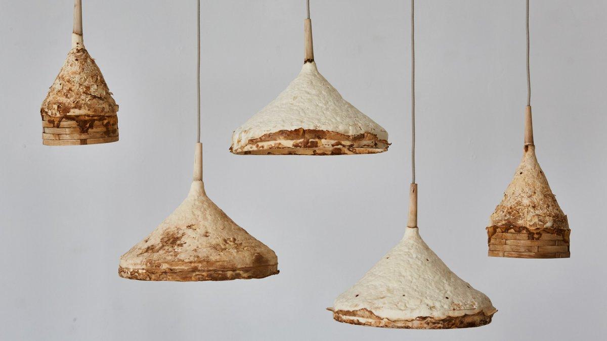 mycelium-timber-london-design-festival_dezeen_2364_hero-1.jpg