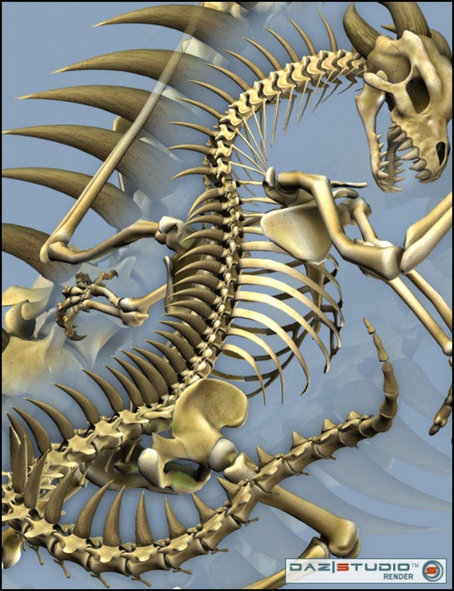 bone-dragon-spikes-large.jpg