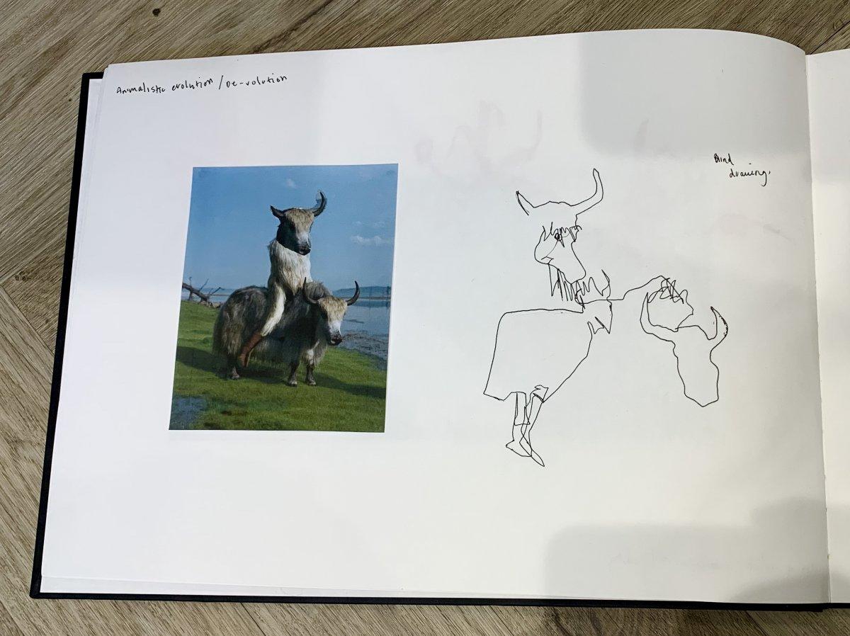 5.jpg.5