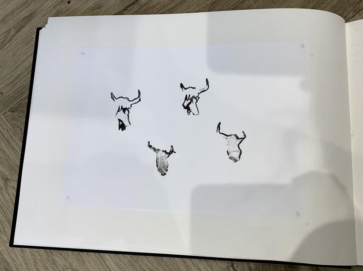 11.jpg.3