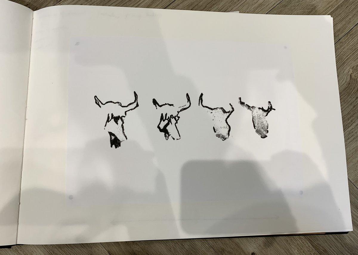 12.jpg.3